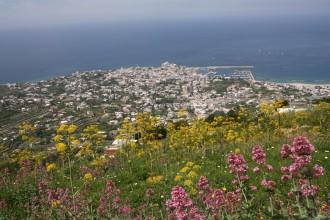 Wanderwoche auf Ischia - Wandern auf Ischia