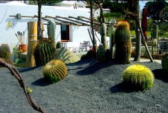 Botanische Ausflüge Giardino Ravino Forio - Insel Ischia