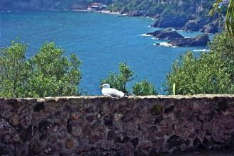 Panorama - Ischia
