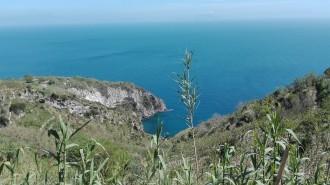 Panoramawanderung - Gemeinde Barano di Ischia