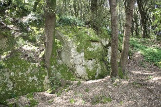 Wanderungen Ischia im Bosco dell Immacolata Casamicciola Terme