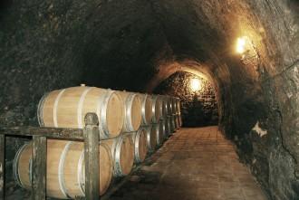 Kulinarische Ausflüge und Weinkellereien