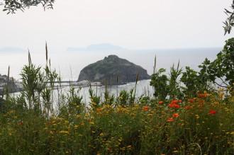 Wandern & Kultur Ischia