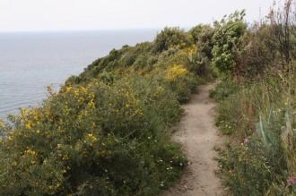Wanderwoche - Wandern & Kultur Ischia