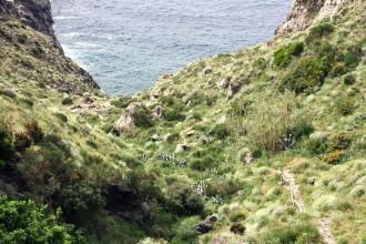 Pelara - Ischia